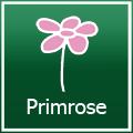 Primrose Gutscheine